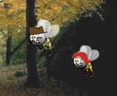 Kleine gelbe Biene