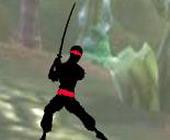 Nieuw Ninja Gevecht 2